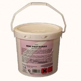 PASTAGRAS PASTA MECANICOS 5kg Especial jabón manos